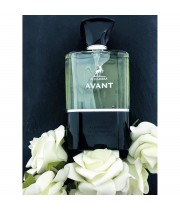 AVANT 100 ml for MEN ORIGINAL